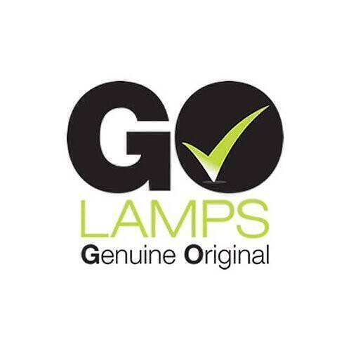 GO LAMPS